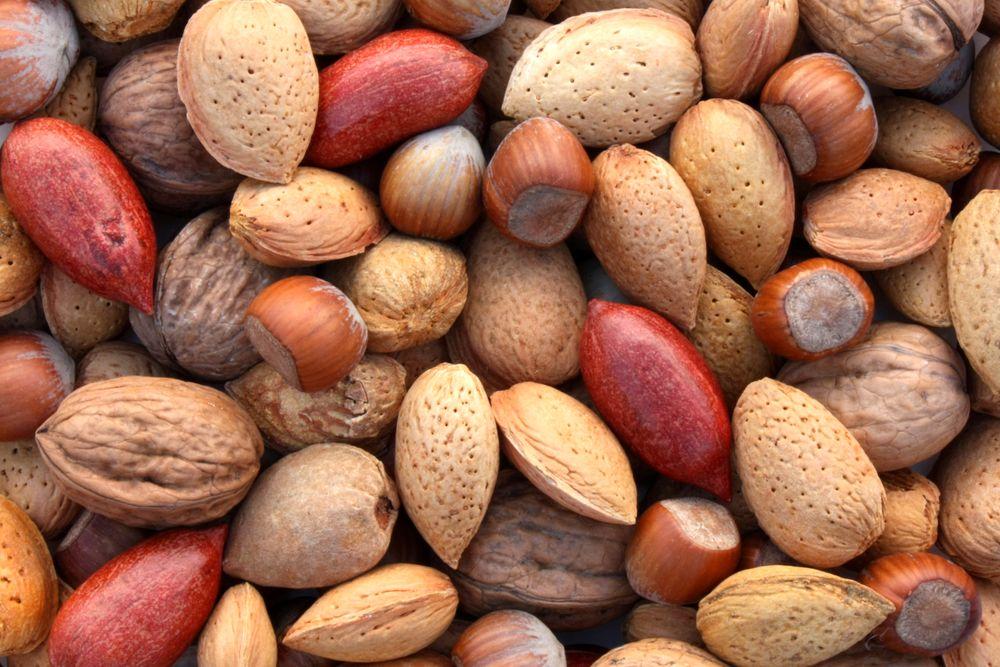 Les fruits à coque aident à réduire le cholestérol !